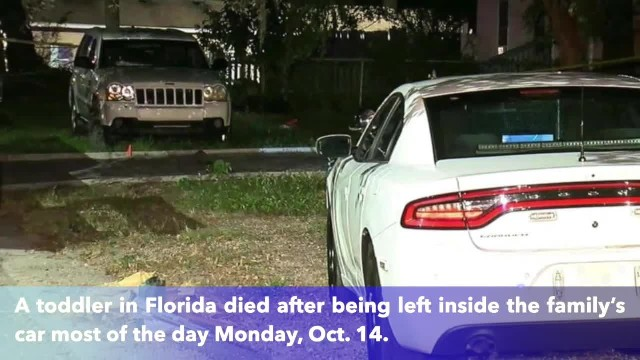 Florida toddler dies after being left in hot car by parents