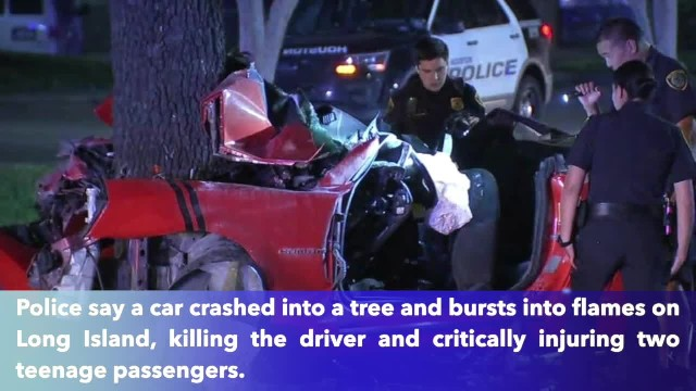 Driver killed, 2 teen passengers critical after car slams into tree, catches fire on Long Island