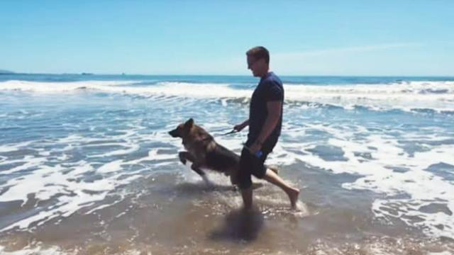 Dog sees the ocean for the first time, and his reaction is everything