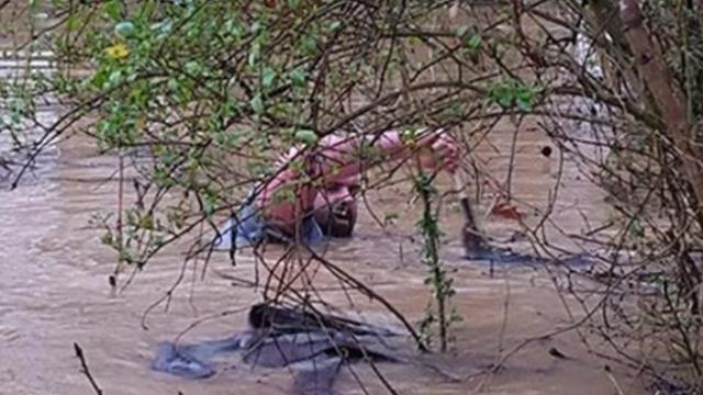 Man sees desperate animals struggling to survive a flash flood so he risk everything and dives in