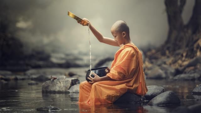A profound lesson from a young monk
