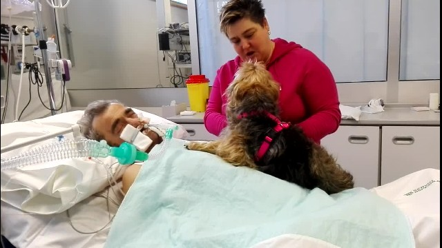 Father In Coma Doesn't Respond To Paramedics, But Gives A Sign When He 'Meets' His Dog