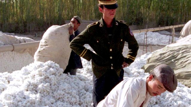 U.S. bans cotton imports from China producer