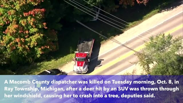 Macomb County dispatcher dies after deer crashes through her windshield