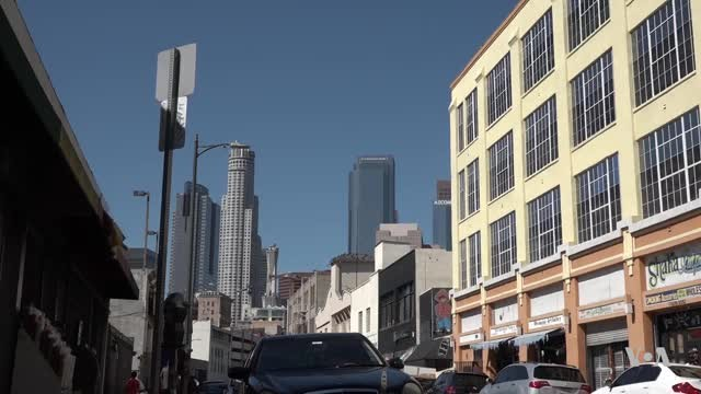 Typhus on Rise in Los Angeles, Several Other US Cities